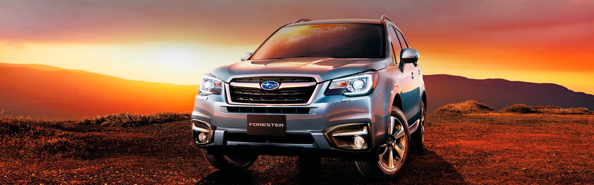 Сервис Subaru Forester